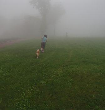霧の中で山を登る