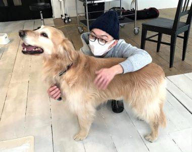 抱擁されるゴールデン