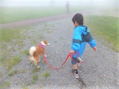 甥っ子ちゃんと散歩