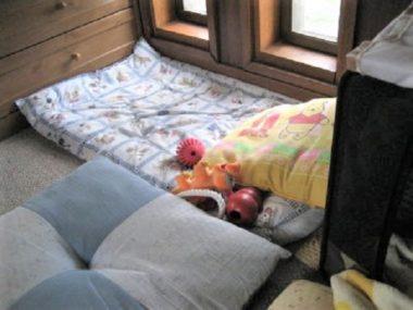 ひなの寝床