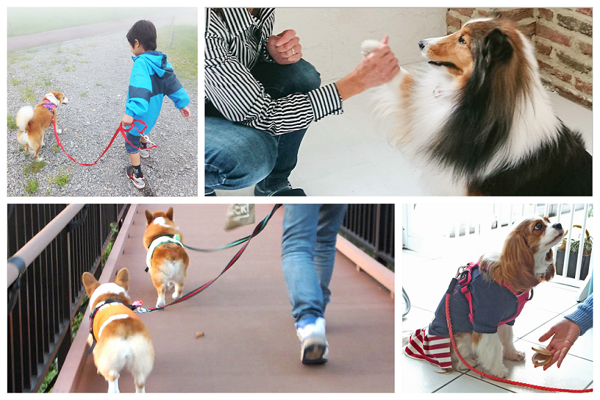 人と犬 コラージュ
